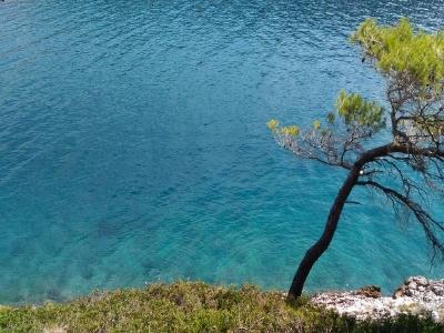 Cristal clear beauty of Adriatic sea